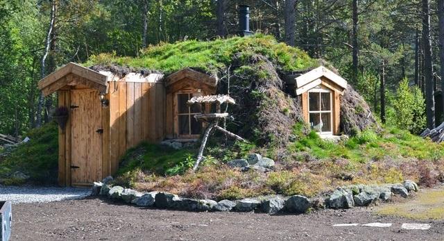 dom w ziemi_1