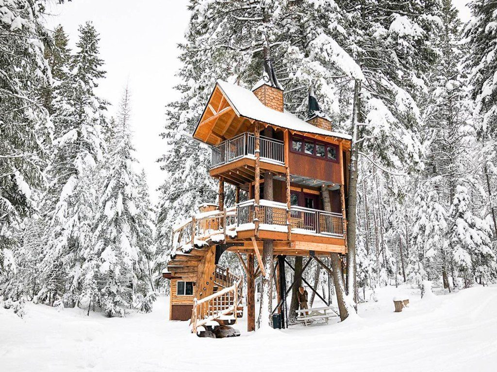 domek na drzewie_1