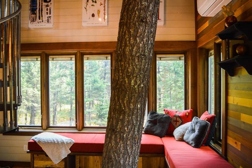 domek na drzewie_5