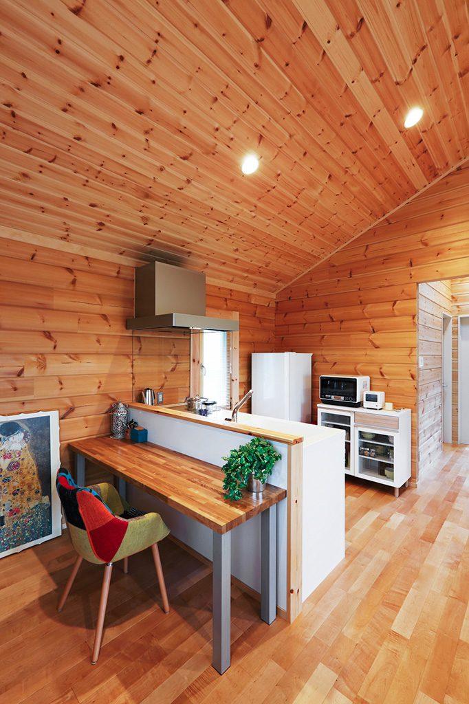 projekt małego domu_2