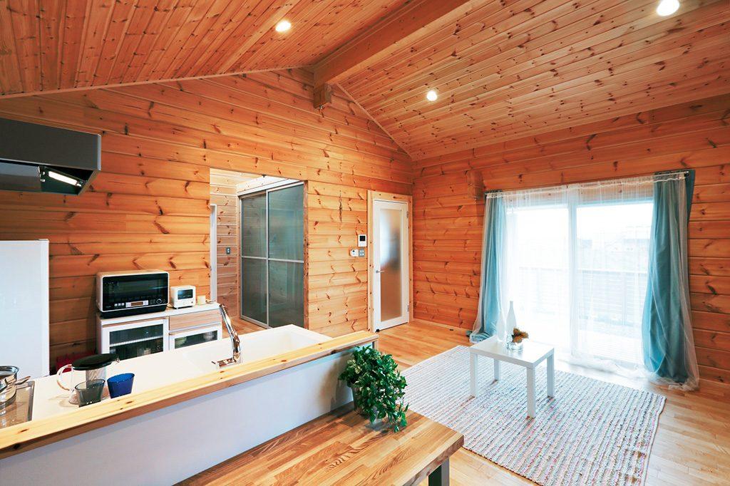 projekt małego domu_5