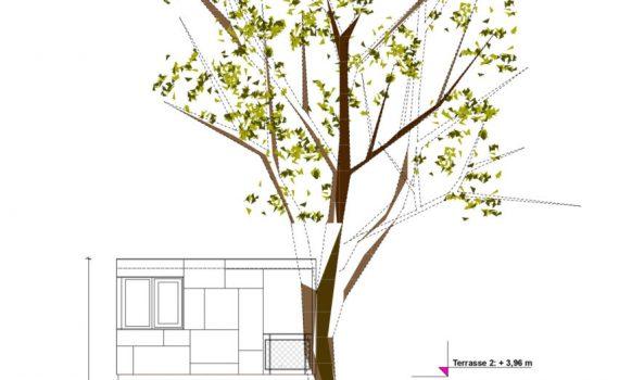 dom na drzewie_18