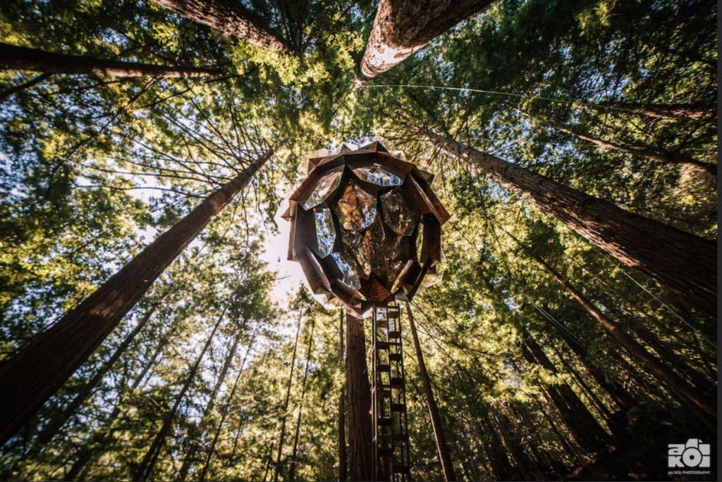 domek na drzewie_12