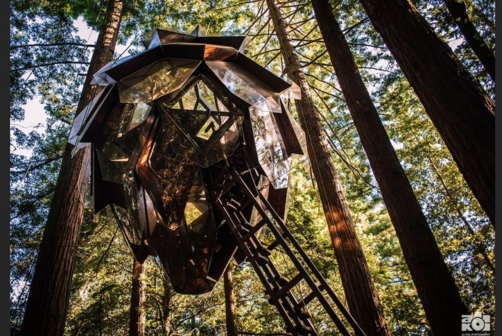 domek na drzewie_13