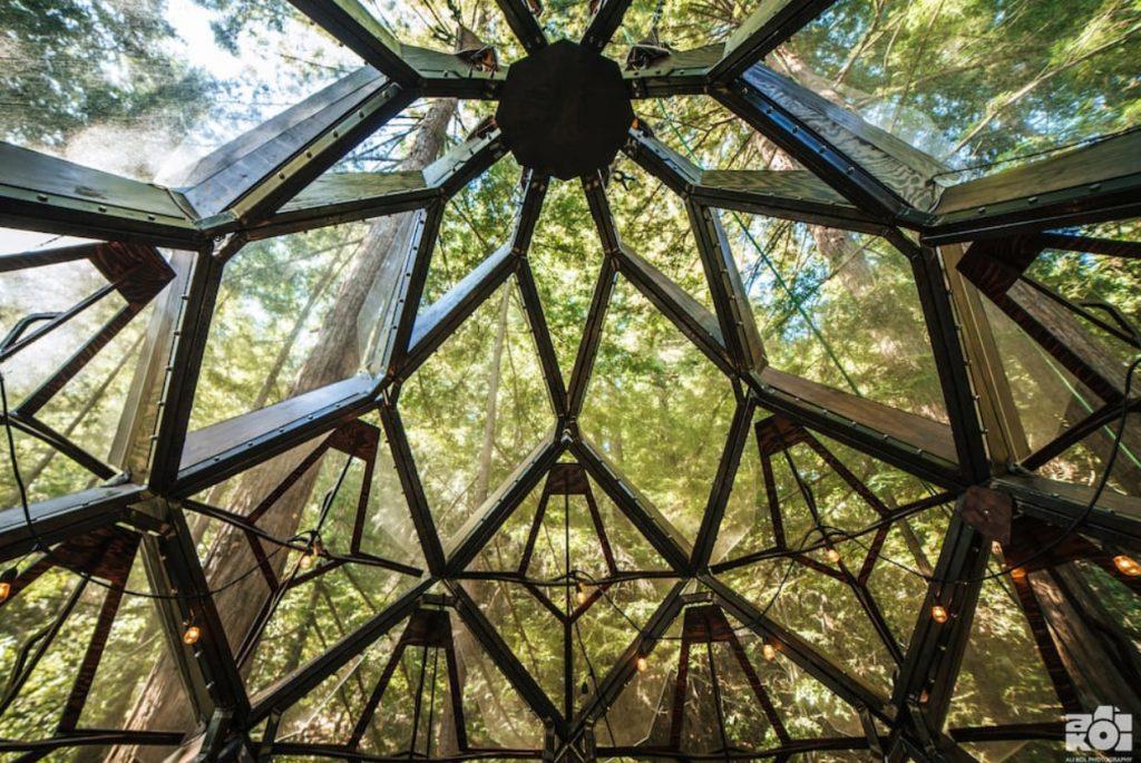 domek na drzewie_15