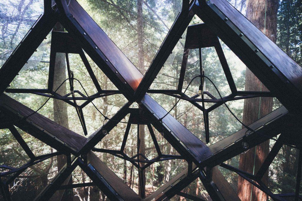 domek na drzewie_2