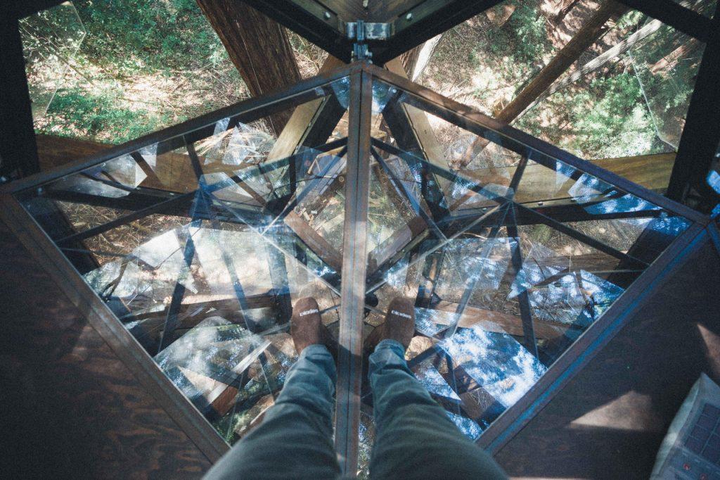 domek na drzewie_3
