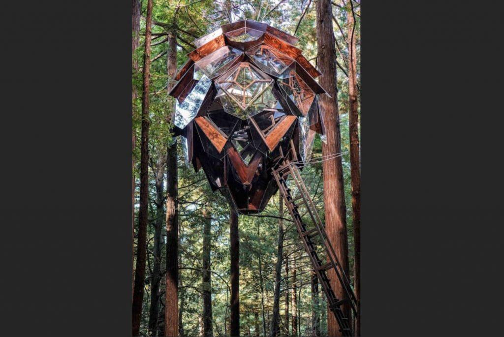 domek na drzewie_9