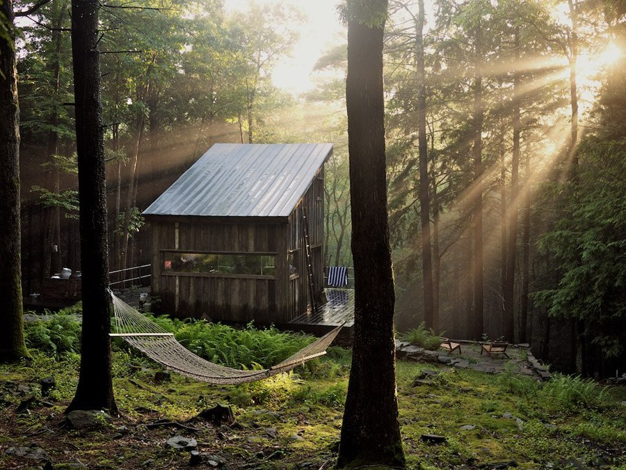 mini domek w lesie_1