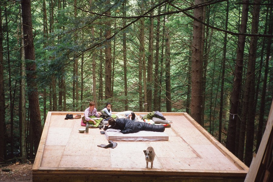 mini domek w lesie_3