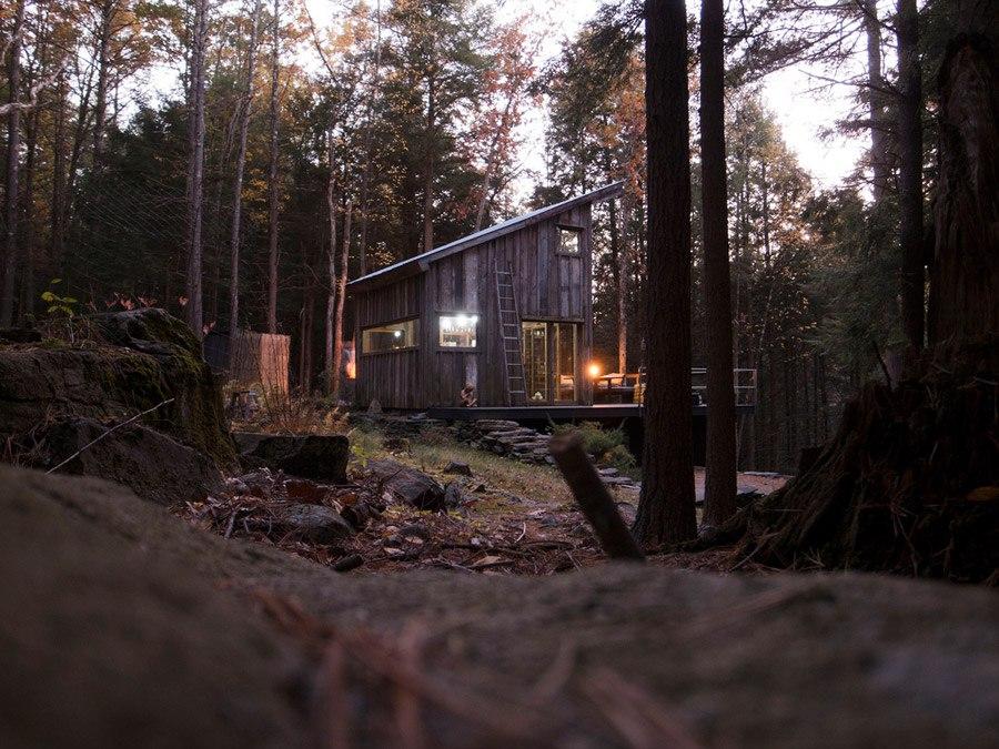 mini domek w lesie_9