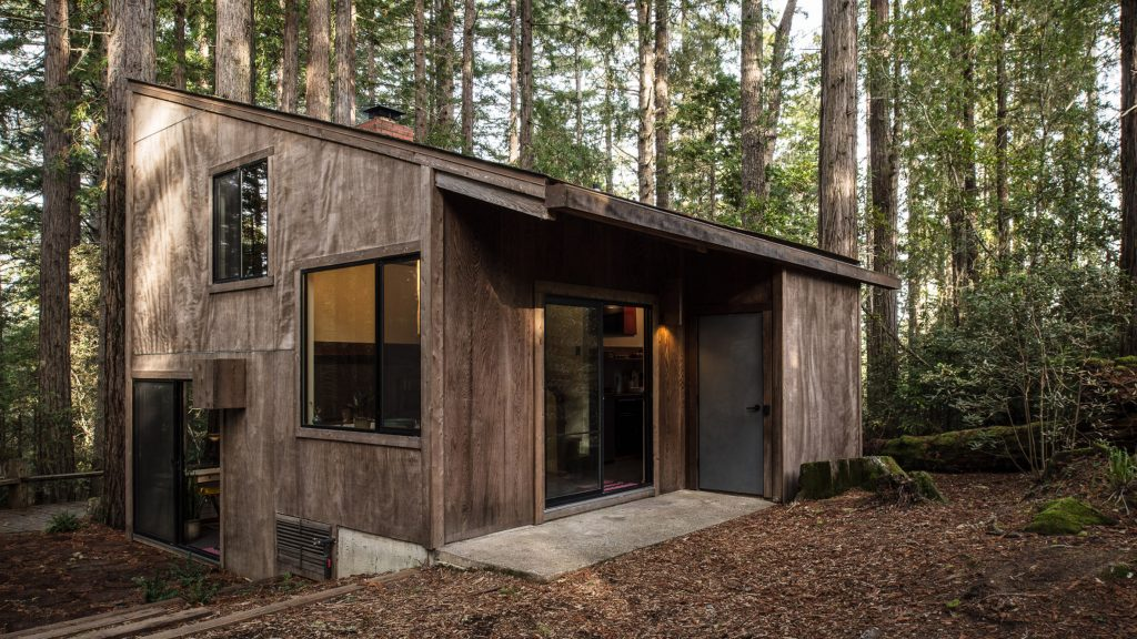 dom w lesie_1