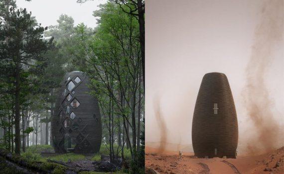 dom w lesie_5